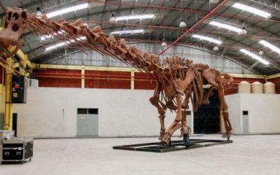 Sai chi era il dinosauro più grande mai esistito?