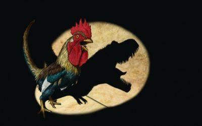 I dinosauri di oggi sono le… galline!