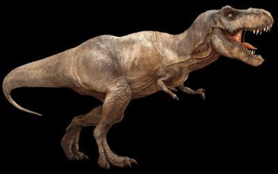 T-Rex: feroci e spaventosi, ma di certo non velocissimi