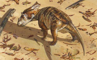 Il cucciolo di dinosauro più completo di sempre