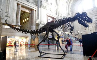 Un T-Rex a spasso per Milano?